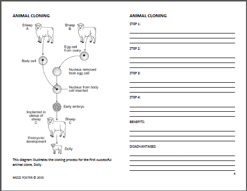 Cloning Worksheets For Middle School - Breadandhearth
