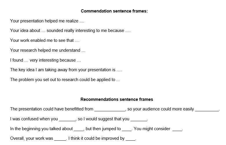 Peer Presentation Evaluation Rubric