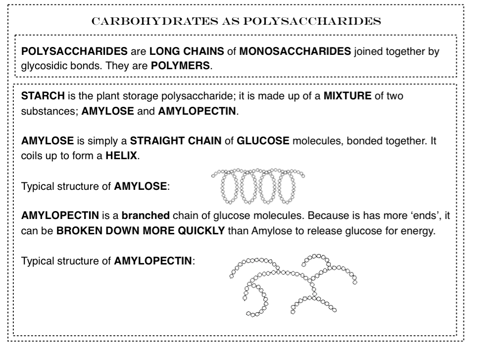 Biochemistry - Carbohydrates, Proteins and Lipids