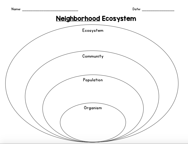 Concept Map Ecosystems