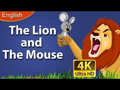 Lion and The Mouse Story | Bedtime Stories | Stories for Kids