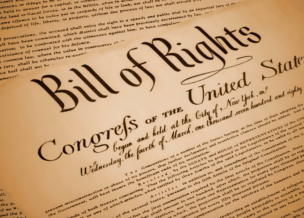 an analysis of the bill of rights in the united states and the ratification of the constitution in 1