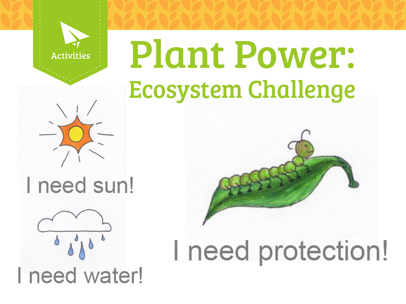 Plant Power: Ecosystem Challenge! - Classroom Science Hands On Activity -  Teacher Guide