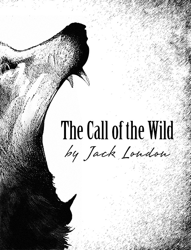 book report call of the wild He recovers the instincts of his wild ancestors: he learns to fight, scavenge for food, and sleep beneath the snow on winter nights at the same time, he develops a fierce rivalry with spitz, the lead dog in the team.